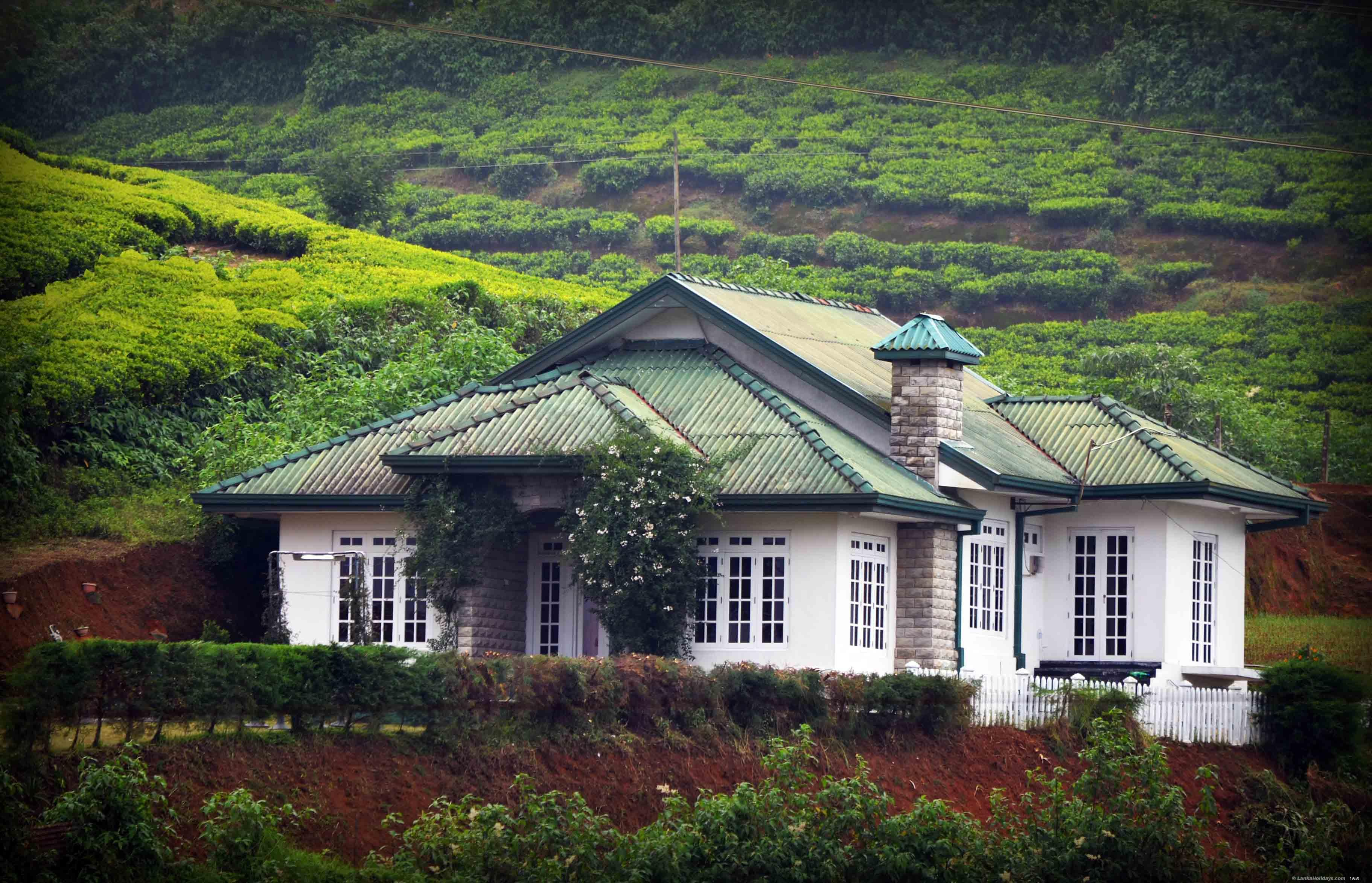 serviced bungalows in nuwara eliya greenhill luxury holiday bungalow. Black Bedroom Furniture Sets. Home Design Ideas